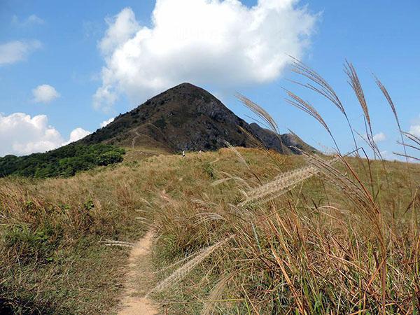 香港秋季行山黃金美景正當時 Hopetrip旅遊網
