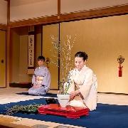 京都祇園角舞妓+茶道+晚餐夜遊團(含部分酒店接送 周二四六出團)
