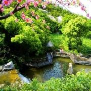 桃花峪景區