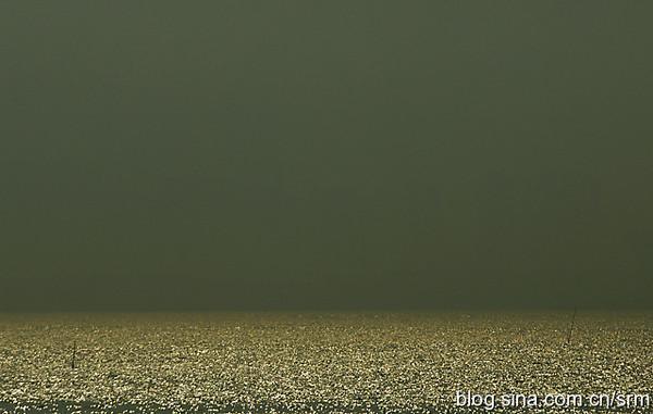 深圳自助遊圖片